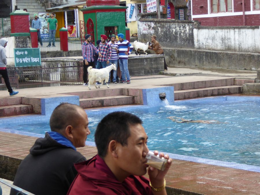 28. Dharamshala's public swimming pool is fed from pure mountain water