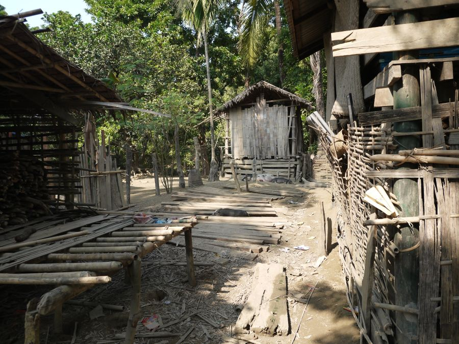 Bamboo is traded in the villages and is used for home construction