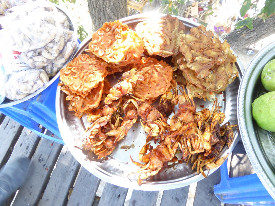 Stall food along the Irrawaddy River. Shrimp cakes and crab.
