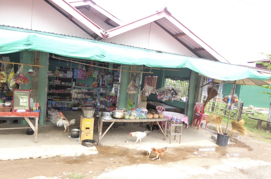 And another House Shop. Here the chickens are window shopping!